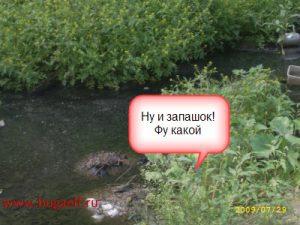 Kanalizatsiya