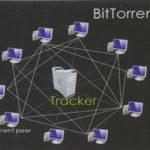 torrent_