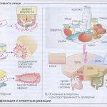 Псевдоаллергия