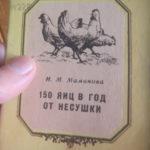 книга о птичнице