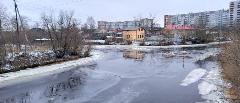 Утки на реке Соломбалке