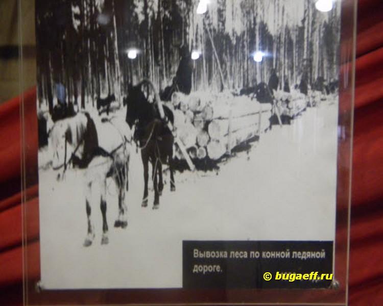 конно-ледовая дорога
